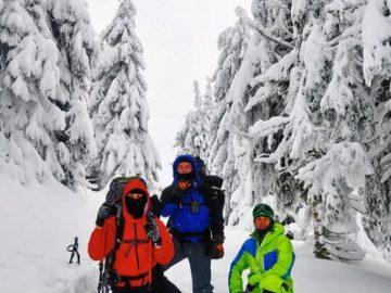 Фото возле деревьев в снегу