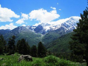 Поляна перед горами