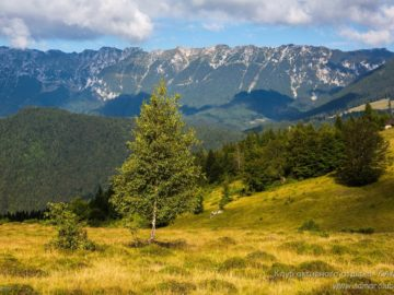 Долина на склоне