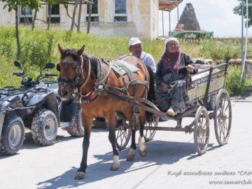 Местные жители на телеге