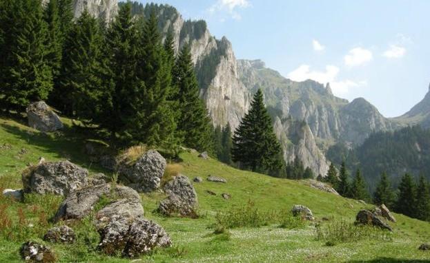 В румынских горах