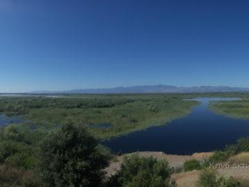 Скадарское озеро привет