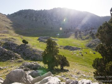 Долина меж холмов