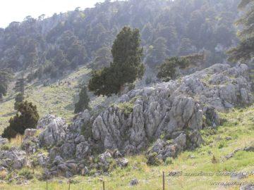 Каменные выступы