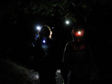 Ночные туристы