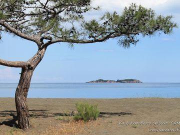Остров в далеке