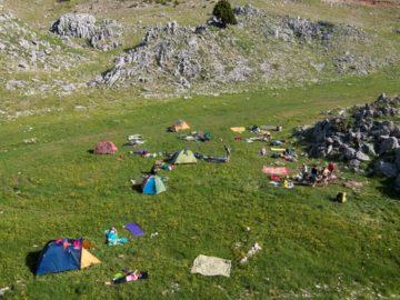 Палатки на поляне