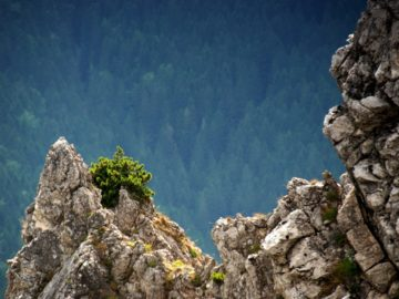 Скалисты вершины