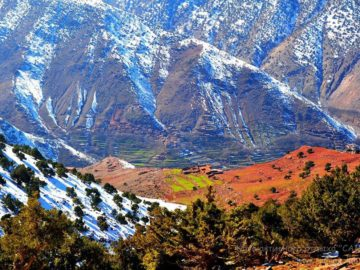 Долина под горой