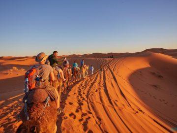 На верблюдах по пустыне