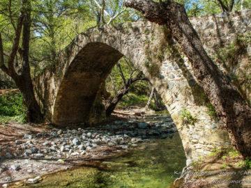Река под мостом