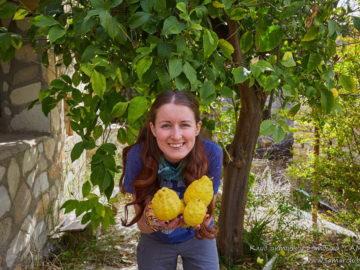 С лимонами