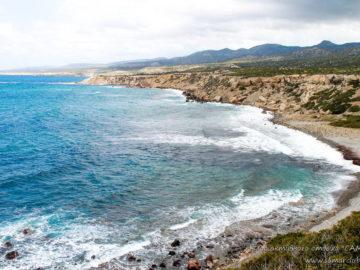 Спокойный океан