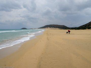 Женщина с собакой на пляже