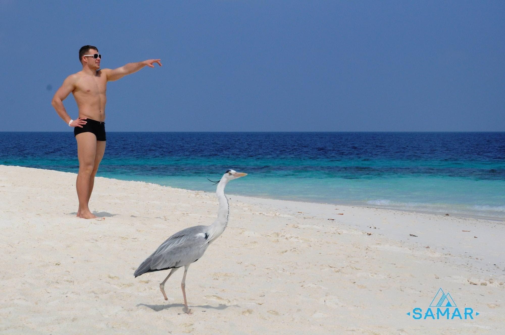 На пляже с птицей