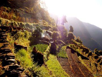 Огороды на склоне горы